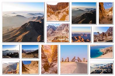 Egypt Sinai Peninsula Collage Art Print by Benny Marty