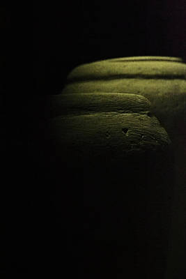 Photograph - Egyptian Canopic Jars by Nadalyn Larsen
