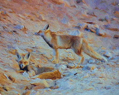 Vulpes Digital Art - Egyptian Red Fox by Roy Pedersen
