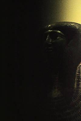 Photograph - Egyptian Royalty by Nadalyn Larsen