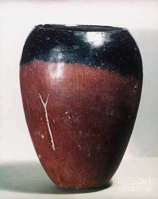Photograph - Egyptian Vase, C4000 B.c by Granger