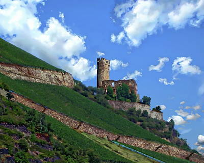 Photograph - Ehrenfels Castle by Anthony Dezenzio