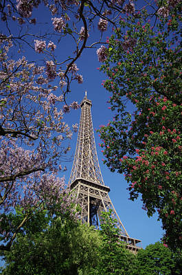 Photograph - Eiffel Tower In Bloom by Sarah Lamoureux