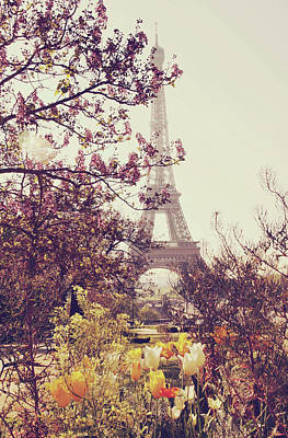 Paris Wall Art - Photograph - Eiffel Tower, Paris by Liz Rusby