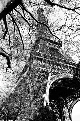 Photograph - Eiffel Tower Through A Myriad Of Branches Paris France Black And White by Shawn O'Brien