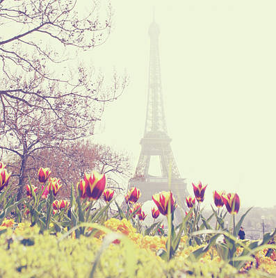 Eiffel Tower With Tulips Print by Gabriela D Costa