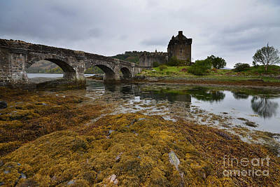Scottish Castle Photograph - Eilean Donan Castle by Smart Aviation
