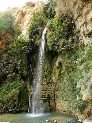 Y120817 Photograph - Ein Gedi Nature Reserve by Mis fotos de viajes