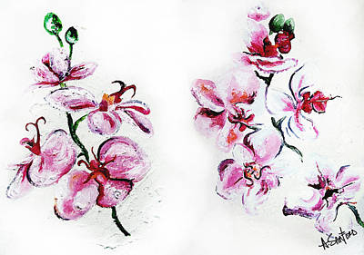 Amanda Drawing - Either Orchid by Amanda  Sanford