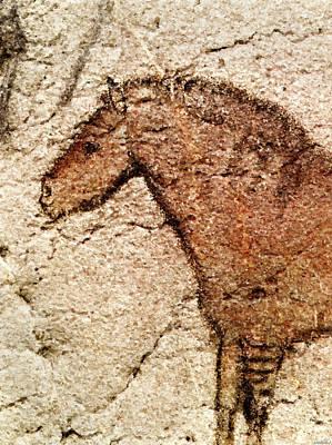 Digital Art - Ekain Cave Horse Detail by Weston Westmoreland