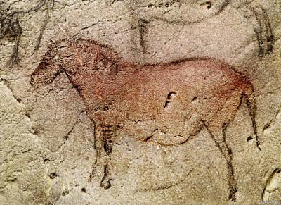 Digital Art - Ekain Cave Horse by Weston Westmoreland