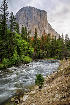 Photograph - El Cap #3 by Vincent Bonafede