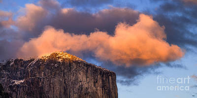 Photograph - El Cap Glow by Anthony Bonafede