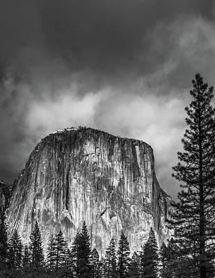 El Cap With Pine Art Print