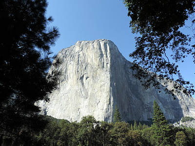 Photograph - El Capitan 8 by Eric Forster