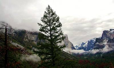 Photograph - El Capitan From Artist Point C by Phyllis Spoor