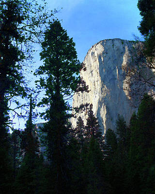 Photograph - El Capitan From The Forest Floor by Timothy Bulone