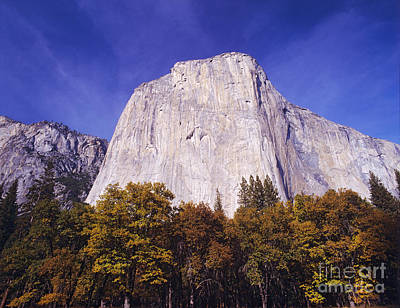 Photograph - El Capitan In Yosemite Np by Dennis Flaherty