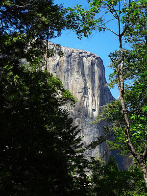 Photograph - El Capitan by Jacqueline  DiAnne Wasson