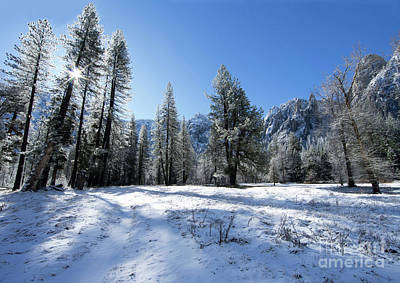 Photograph - El Capitan Meadow Winter Yosemite National Park by Wayne Moran