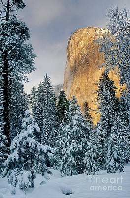 Photograph - El Capitan On A Winter Morning Yosemite National Park California by Dave Welling