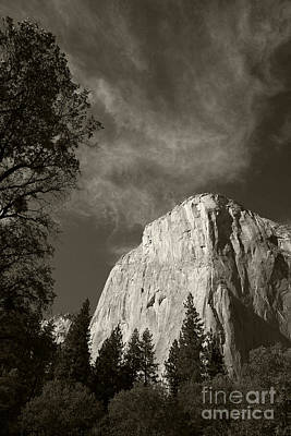 Photograph - El Capitan by Timothy Johnson