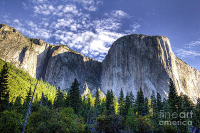 Photograph - El Capitan  by Vincent Bonafede