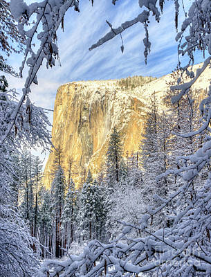 Photograph - El Capitan Winter Majesty Yosemite National Park by Wayne Moran