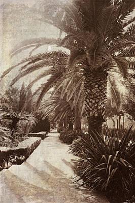 Photograph - El Parque Vintage. Malaga. Spain by Jenny Rainbow