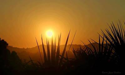 Photograph - El Sobrante Morning Glow by Joyce Dickens