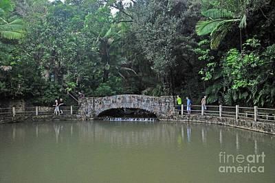Photograph - El Yunque Bridge by Gary Wonning