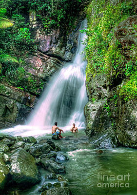 Photograph - El Yunque Rain Forest Waterfall by David Zanzinger