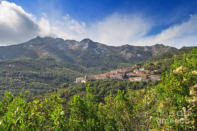 Photograph - Elba - Marciana Village by Antonio Scarpi