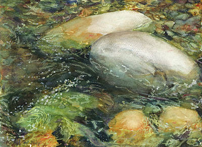 Wading River Painting - Elbow River Rocks 2 by Madeleine Arnett
