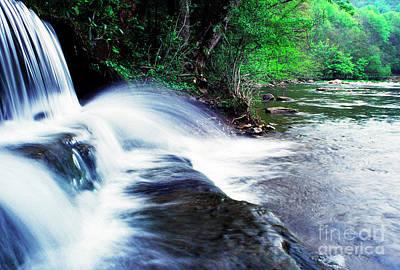 Elbow Run Flowing Into Williams River Art Print by Thomas R Fletcher