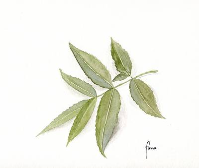 Painting - Elderberry Leaf by Annemeet Hasidi- van der Leij