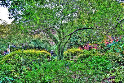 Elderly Man At St. Luke's Garden Original by Randy Aveille