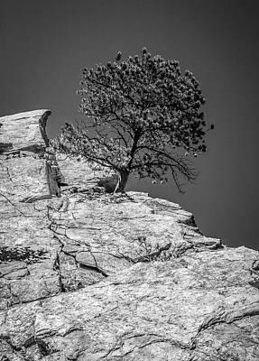 Photograph - Eldorado Springs 7 by Marilyn Hunt
