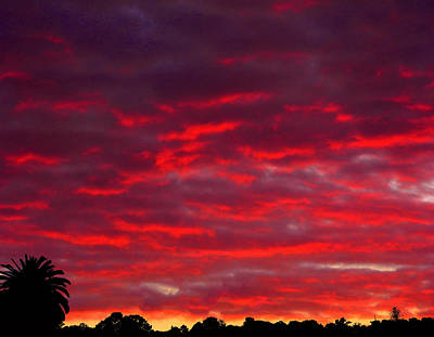Photograph - Eldrich Sunset by Mark Blauhoefer