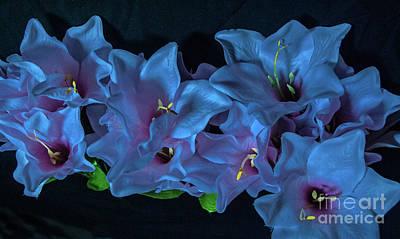 Photograph - Electric Blue Flowers by Scott Hervieux