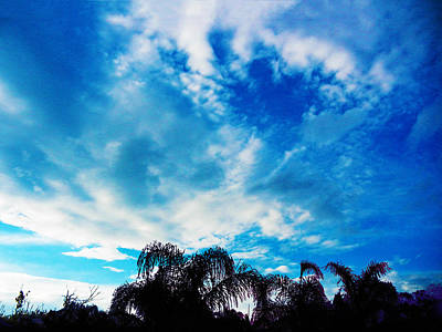 Photograph - Electric Blue Hawaii by Mark Blauhoefer
