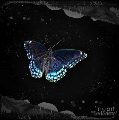 Photograph - Electric Butterfly by David Arment