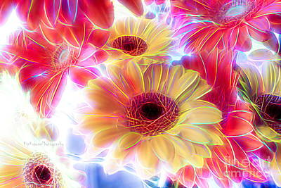Photograph - Electric Daisy Carnival by Kip Krause