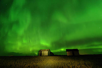 Photograph - Electric Green Skies by Dan Jurak