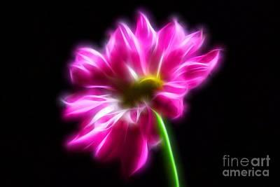 Photograph - Pink Surprise by Krissy Katsimbras