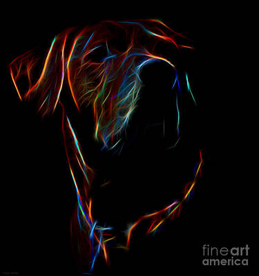 Rhodesian Ridgeback Photograph - Electric Ridgeback by Mim White