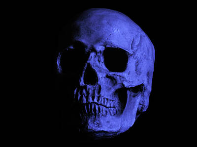Photograph - Electric Skull by Mark Blauhoefer