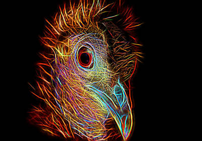 Impressionism Photograph - Electrified Great Argus Bird Portrait by Charles Muziani