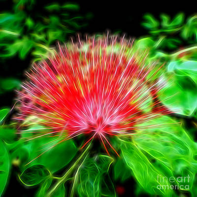 Photograph - Electrified Neon Red Fan by Sue Melvin