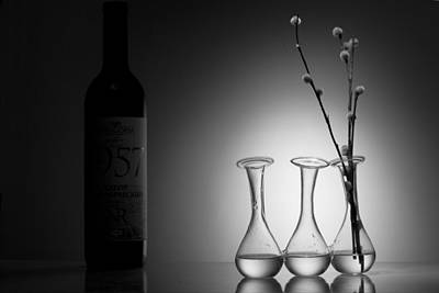 Big Wine Bottles Photograph - Elegance. Light And Shadow by Dmitry Soloviev